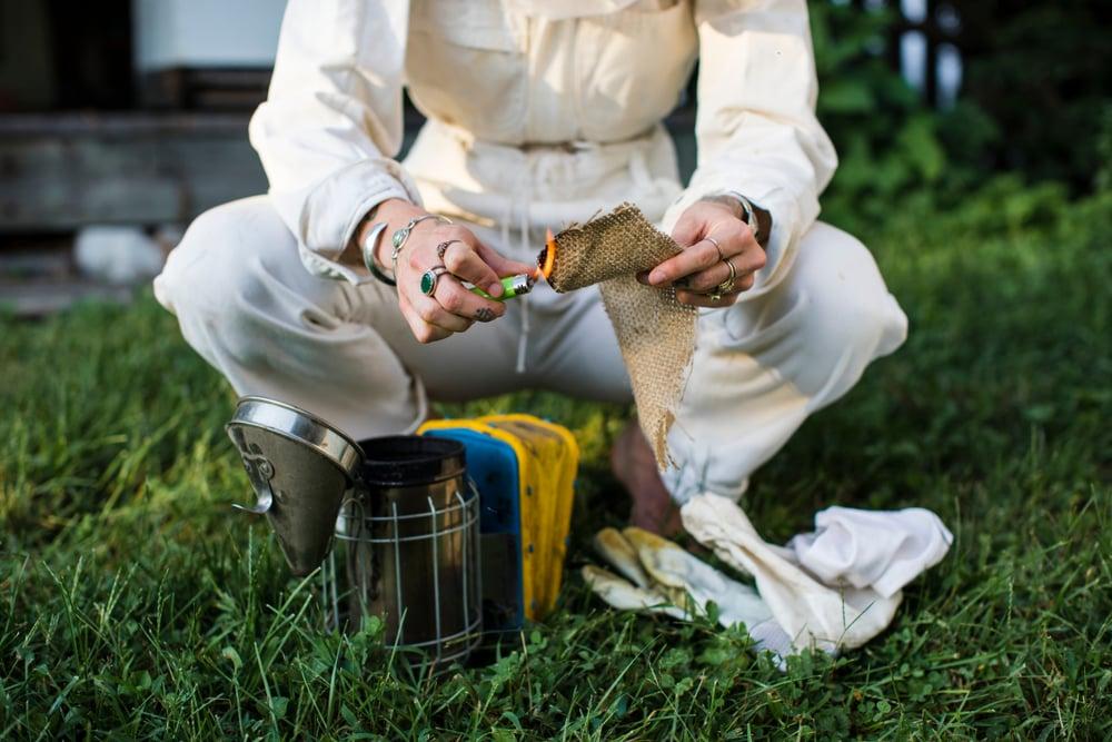 Beekeeper preparing the smoker on the grass(Rawpixel.com)S