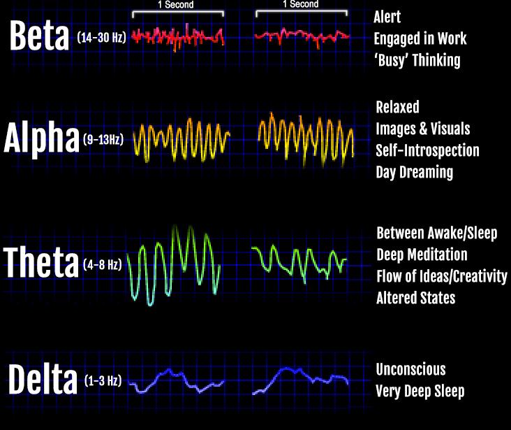 brain waves/ activity