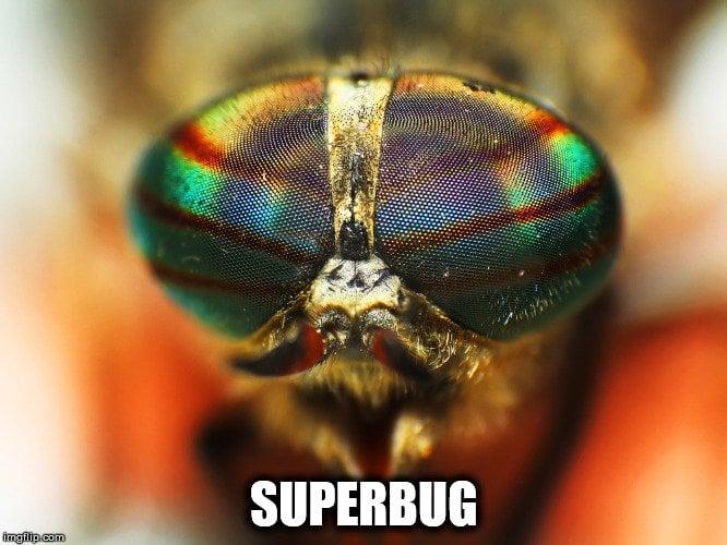 superbug meme