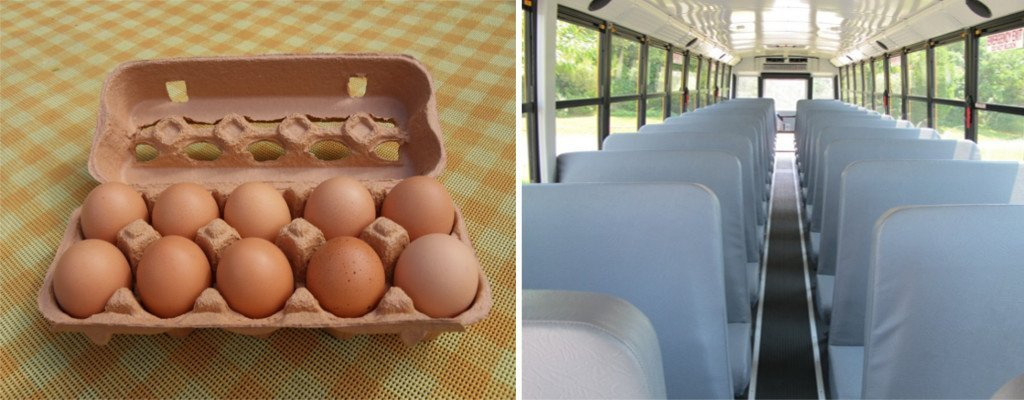 eggs and bus seats