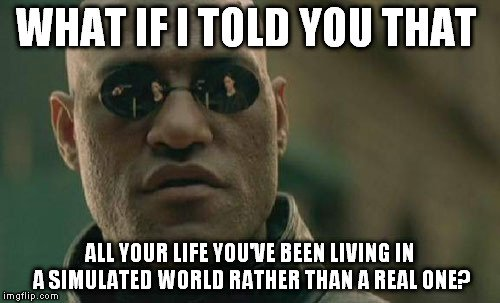 simulated world meme