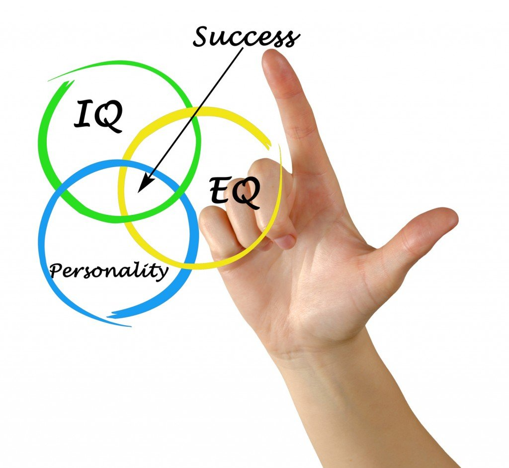 EQ / IQ Balance (Photo Credit: Dmitry / Fotolia)