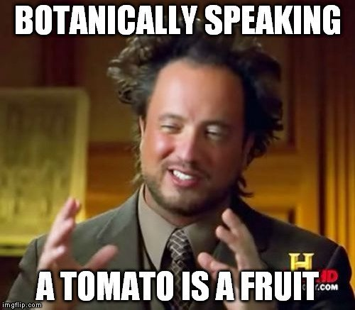a tomato is a fruit meme