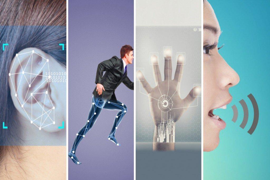 world of biometrics