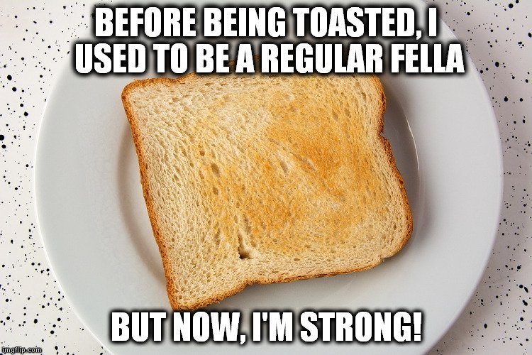 bread toasted meme 1