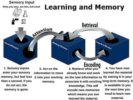 Memory Cycle