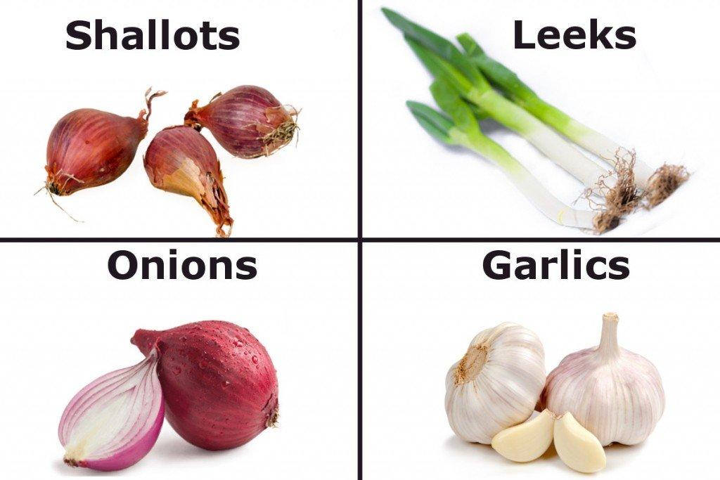 Shallots Leeks Onions garlics