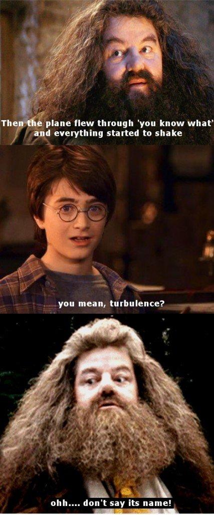 Harry hagrid meme