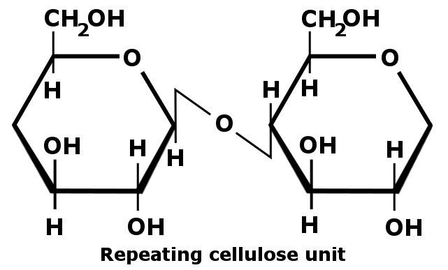 Formula Cellulose consists of many hydroxyl groups