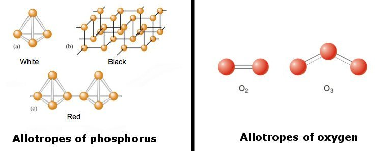 Allotropes of Phosphorus & Allotropes of Oxygen