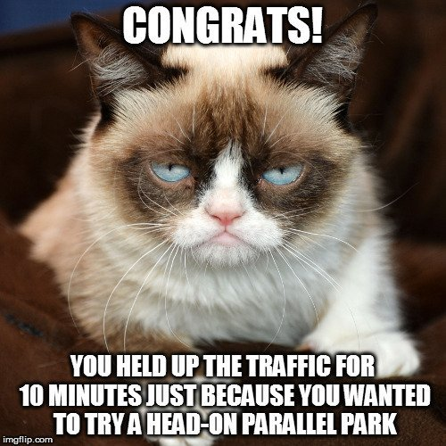 you-held-up-the-traffic-for-10-minutes-just-because-you-wanted-to-try-a-head-on-parallel-park-meme