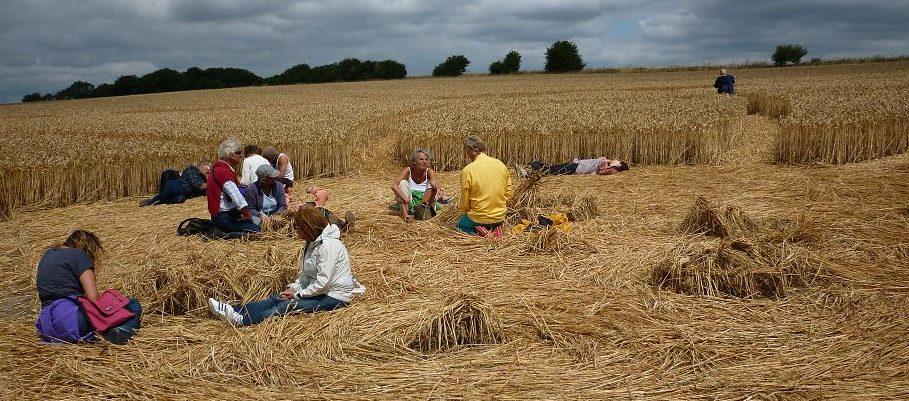 People at Crop Circles
