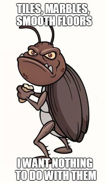 Cockroach meme