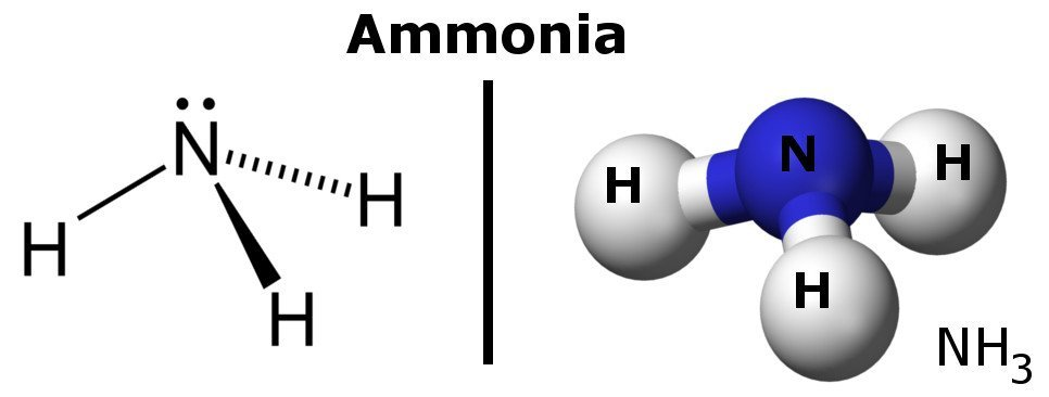 Ammonia molecules diagram