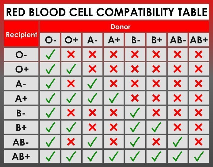 Red Blood Cell Compatibility Chart