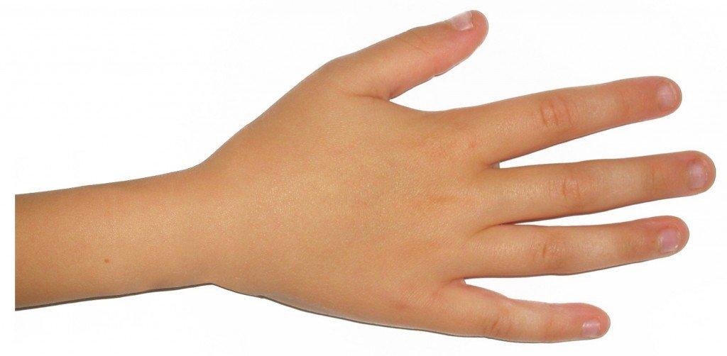 Child palm