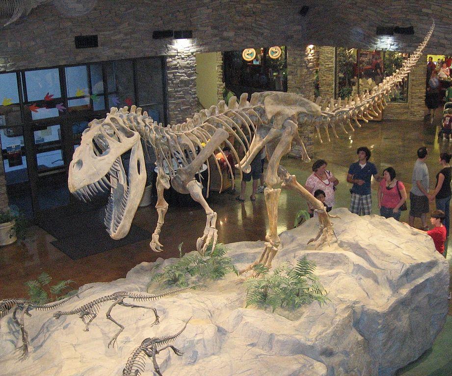 Museum AL dinosaur