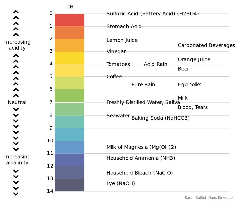 Power of Hydrogen (pH) chart
