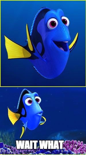 Dory meme wait what