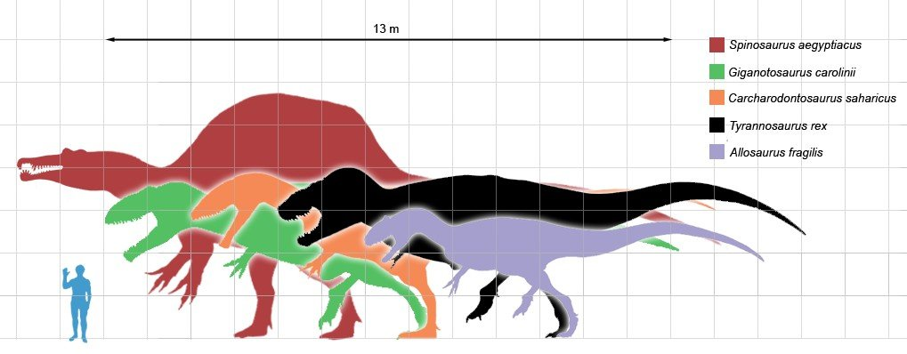 size comparison of dinosaurs