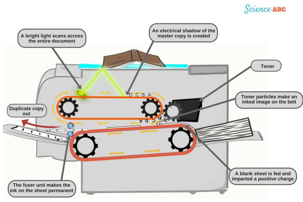 Photocopier diagram (Working of photocopier)