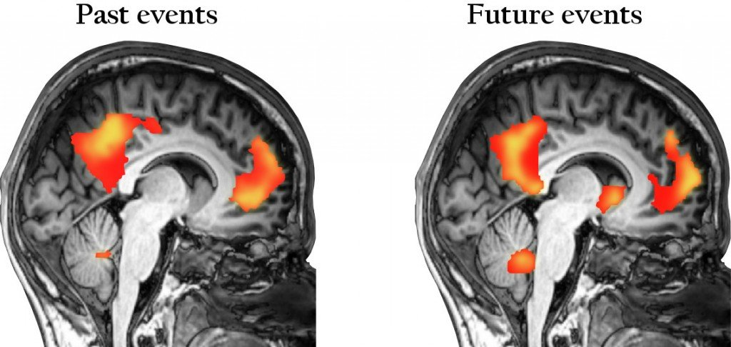 Elaboration of brain past and future events