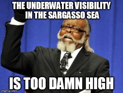 , What Is The Sargasso Sea?, Science ABC, Science ABC