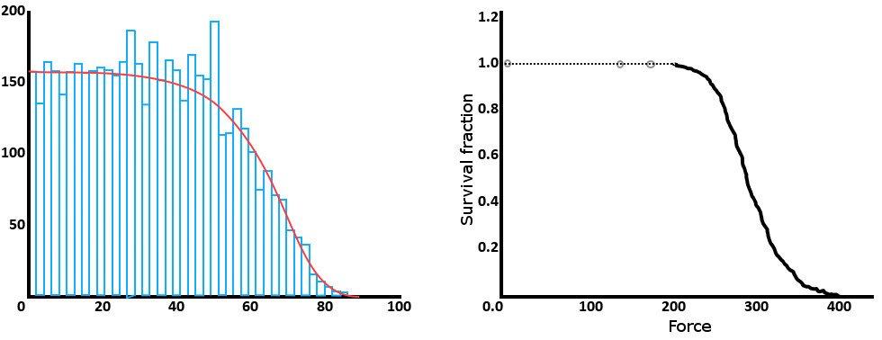life curve image