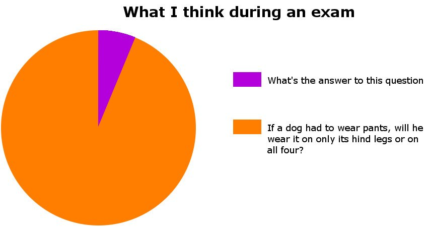 What i think during an exam pi chart