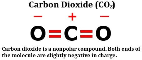 , Is Carbon Dioxide (CO2) Polar Or Nonpolar?, Science ABC, Science ABC