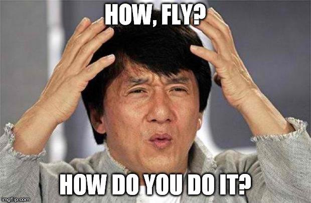 How, fly how do you do it meme