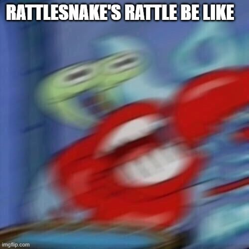 RATTLESNAKE'S RATTLE BE LIKE