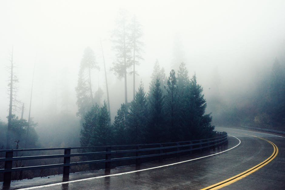 Fog on road