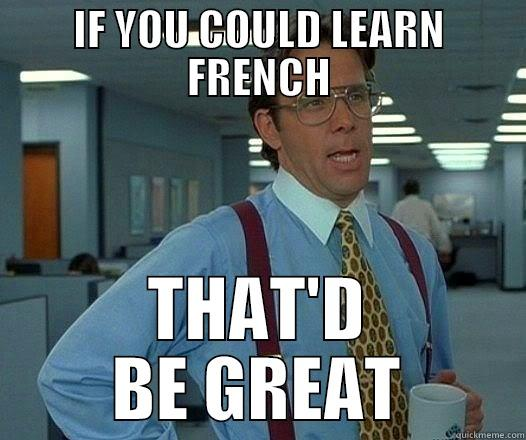I f you could learn french that'd be great meme