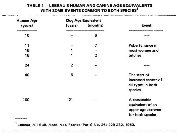 Lebeau's Research Book