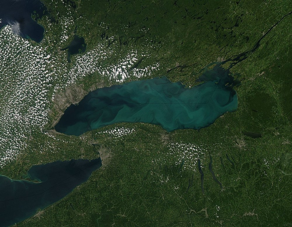 Phytoplankton bloom in Lake Ontario