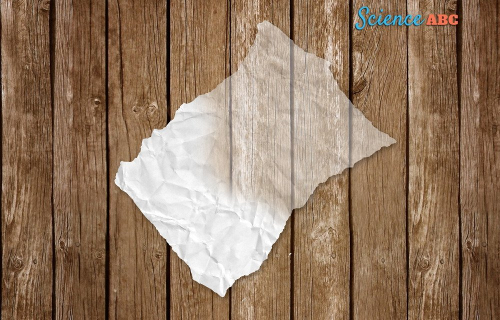 , Why Does Grease Make Paper Translucent (Or Transparent)?, Science ABC, Science ABC