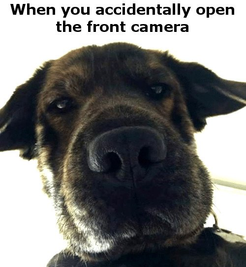 When you accidentaly open the front camera meme