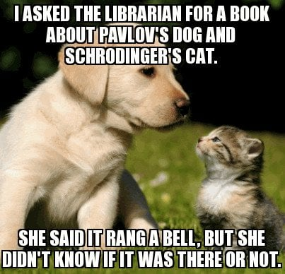 I asked the librarian for a book about pavlov's dog and schrodinger's cat she said it rang a bell, but she didn't know if it was there or not meme