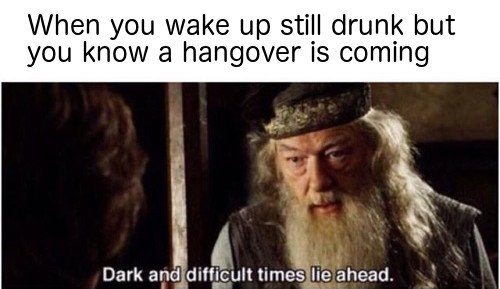When you wake up still drunk but you know a hangover is coming meme