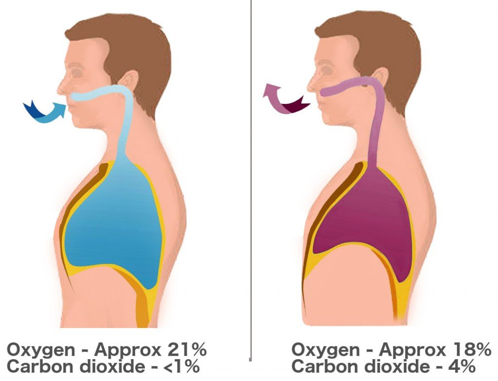 Breathing diagram oxygen carbon dioxide