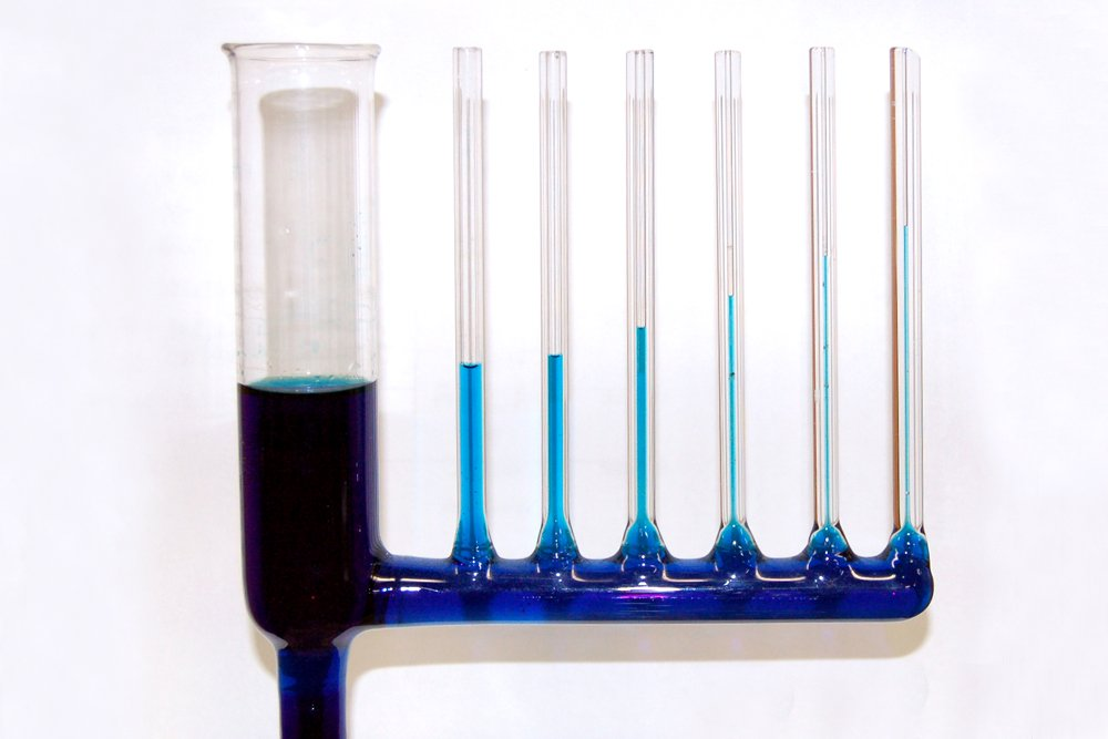 capillary action water