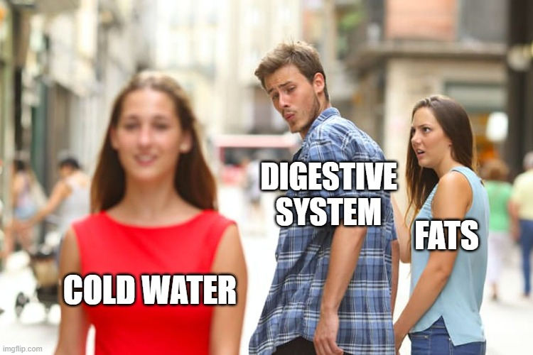 DIGESTIVE SYSTEM; FATS; COLD WATER