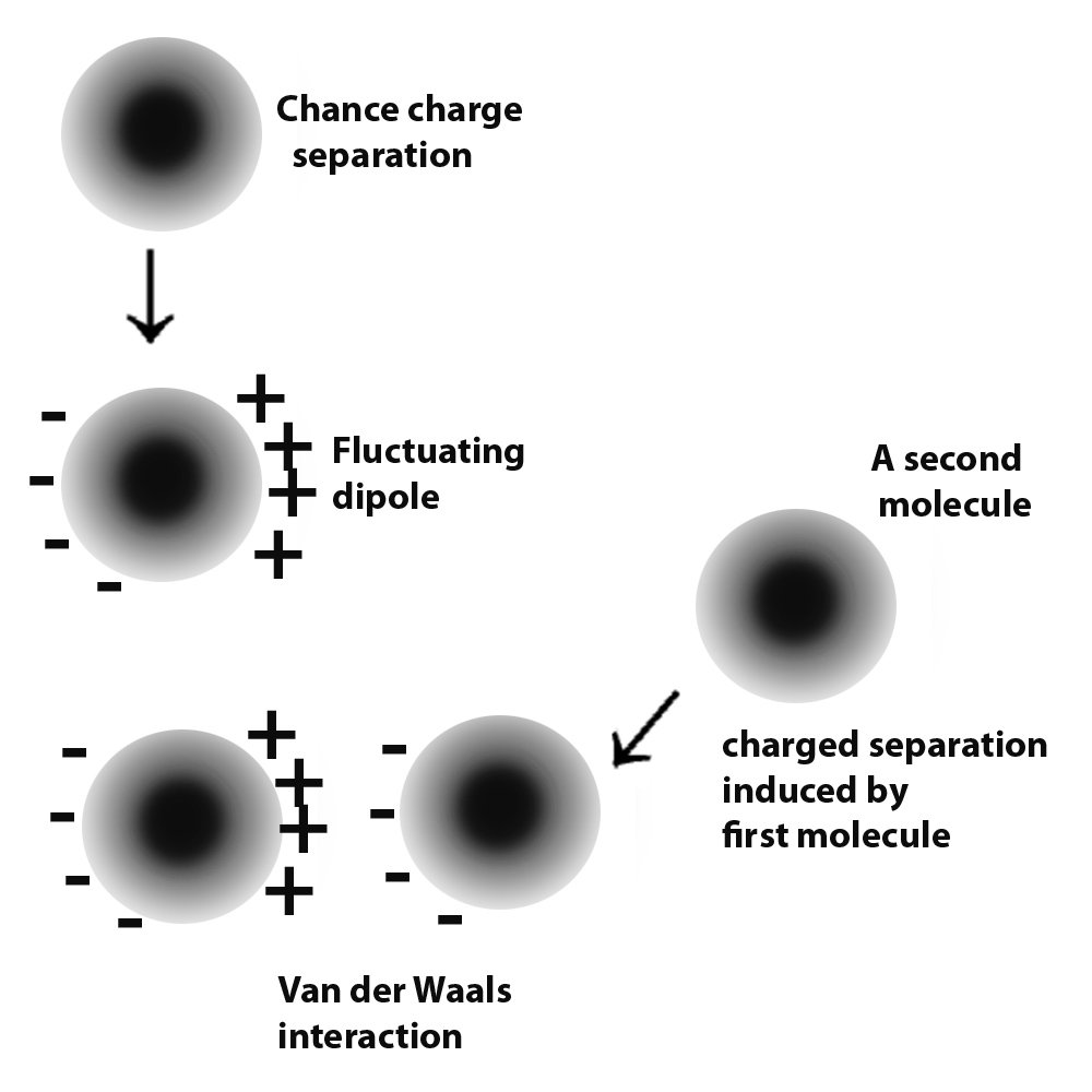 Van der Waals forces