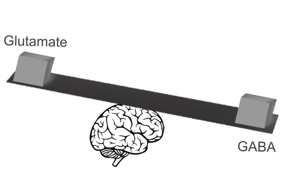glutamate-gaba-balance