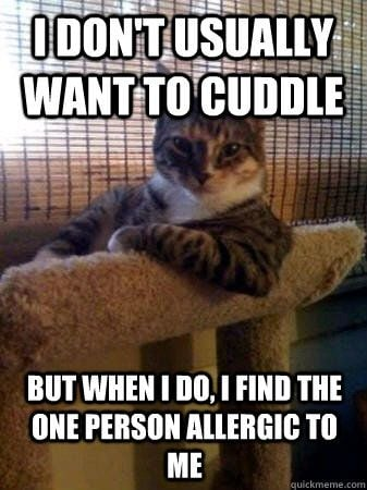 i dont want usually cuddle meme