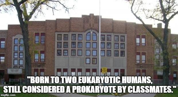 Born to two eukaryotic humans meme