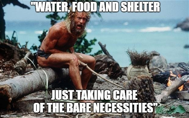 Water, food and shelter meme