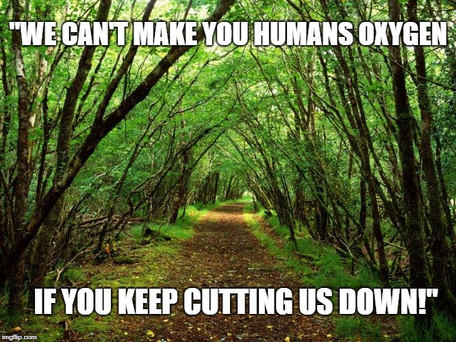 We can't make you humans oxygen meme