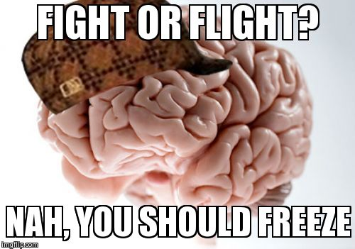 fight or flight meme